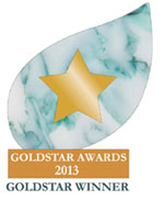 goldstar winner logo 2013